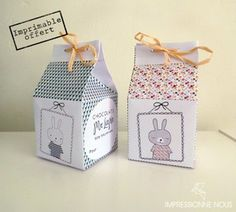 Boîtes Lapin de Pâques / Easter box