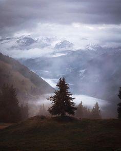 Hiking, Colours, Autumn, Mountains, Nature, Travel, Fall, Naturaleza, Trips