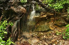 During a dry spell, Hickory Nut Waterfall at Chimney Rock State Park was a gentle curtain of water; now, following 10 days of rain it is a raging torrent. Chimney Rock North Carolina, Chimney Rock State Park, North Carolina Waterfalls, 10 Days, State Parks, Rain, Outdoor, Beautiful, Rain Fall