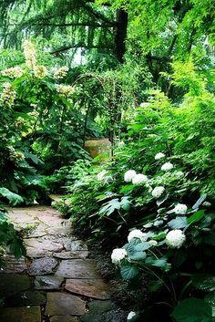 Whimsical Raindrop Cottage, flowersgardenlove: Garden Path Flowers Garden...