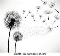 dandelions line drawing - Google Search