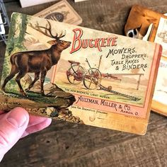 For those who have followed along on our journey the past few years, you may already know how much we love advertising with deer or stag illustrations. We're proud Buckeyes born and raised in Ohio. We hail from Dayton & Columbus and have called central Oh