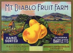 Crate label vintage mt diablo bancroft contra costa county california pear