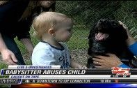 Family Dog Tips Off Parents to Abusive Babysitter | Ecorazzi