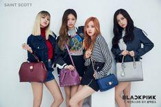 Black Pink turn into chic models for designer handbag brand 'Saint Scott'   allkpop.com