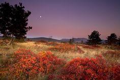 Autumn Moonrise, Carso, Italy (http://www.ervinskalameraphotos.com/wp-content/uploads/2011/07/Autumn-moonrise-Carso-Italy-750x500.jpg)