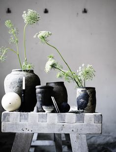 Blog Home and Cottage:  images from Tineke their latest collection!