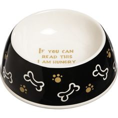 If You Can Read This Dog Bowl  at Joss and Main