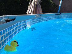 Adding a Hayward Thru-the-Wall Skimmer to Intex Metal Frame Pool (PICS!
