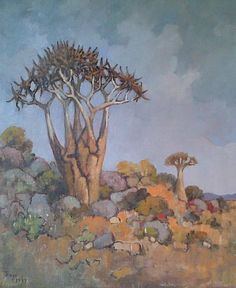 Conrad Theys, Kokerboom, H1363, 360 x 440, Framed, Price on request
