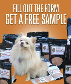 Powder 4 PAWS Free Pet Supplement Sample - US