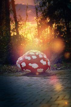 Zonsondergang in het Sprookjesbos door Victor Coffa