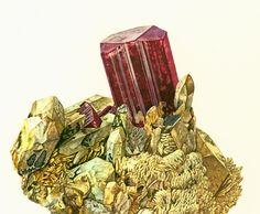 1970 Vintage Red Tourmaline Print. SCI ART Print. Antique