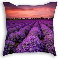 Lavender Field Throw Pillow Pillow Ideas, Lavender Fields, Throw Pillows, Prints, Cushions, Decorative Pillows, Decor Pillows, Pillows, Scatter Cushions
