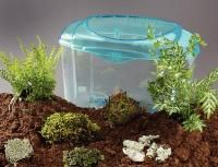 Woodland Terrarium Set comes with everything you need to set up a balanced environment, including plants, 3.3-gallon plastic container, instructions, and information sheet. Includes ferns (2), liverwort, moss (2), lichen, and soil.