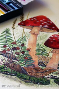 Toadstools watercolor painting by Amelia Herbertson Sketchbook Inspiration, Painting Inspiration, Art Inspo, Mushroom Paint, Watercolor Paintings, Watercolours, Types Of Art, Botanical Art, Painting & Drawing