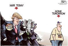 Donald Trump Cartoons: Hair Today