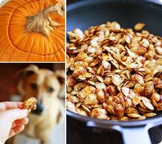 Salted Caramel Pumpkin Seeds – Sweet-salty twist on leftover pumpkin seeds! So… - Modern Flavored Pumpkin Seeds, Sweet Pumpkin Seeds, Pumpkin Seed Recipes, Toasted Pumpkin Seeds, Roast Pumpkin, Pumpkin Pie Spice, Pumpkin Carving, Salted Caramel Desserts, Seasonal Food