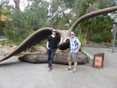 The boys from Panic! At The Disco, Brendon and Kenneth, visited Healesville Sanctuary whlie in town for Soundwave 2014