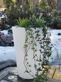 Kestävät ruukut ulos Home In Garden sisustusvrkkokauppa Garden, Plants, Home, Garten, Lawn And Garden, Ad Home, Gardens, Plant, Homes