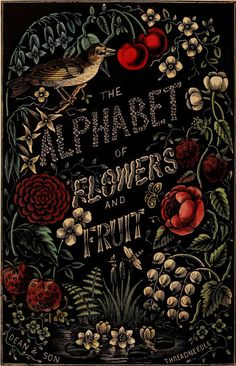 ≈ Beautiful Antique Books ≈ The Alphabet of Flowers and Fruit. London: Dean & Son, 1856