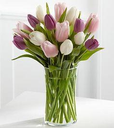 FTD Flowers Painted Sky Tulip-15 Stem... $39.99