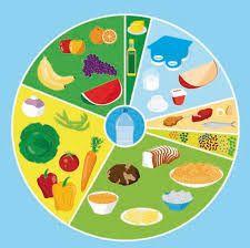 Resultado de imagem para qual a diferença entre a roda dos alimentos e a pirâmide