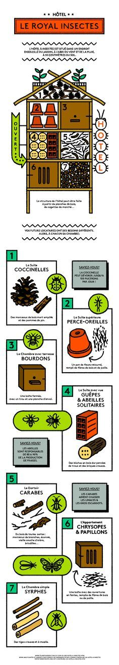 How to build a hotel in insects? Bug Hotel, Bird Houses Diy, Garden Projects, Garden Plants, Garden Insects, Diy Garden, Garden Inspiration, Gardening Tips, Outdoor Gardens