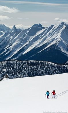 The Banff and Lake Louise area are a winter wonderland where you can enjoy mountain scenery through a number of different activities. Cross it off your bucket list and enter to a win a 7 night dream vacation. Oh The Places You'll Go, Places To Travel, Places To Visit, Ski Banff, Lake Louise Ski, Adventure Is Out There, Dream Vacations, The Great Outdoors, Wonders Of The World