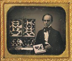 Daguerreotype - butterfly collector