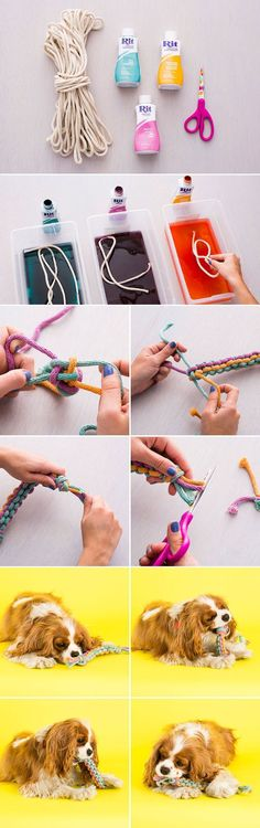 It's SO easy to DIY this dog toy. 1. Dye rope. 2. Knot ropes together and weave. 3. Tie it off once you reach the end.