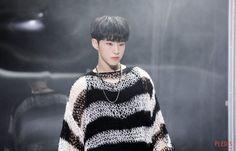 Wonwoo, Jeonghan, Seungkwan, Seventeen Number, Seventeen Album, Hoshi Seventeen, Vernon, Hip Hop, Pledis 17