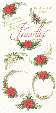 Christmas Star Poinsettia Watercolor Hand painted clipart