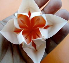 Origami Flower.  No diagrams.  But the structure seems similar to a lotus flower.  Experiment.
