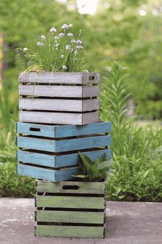 Painted crate planters for garden or storage
