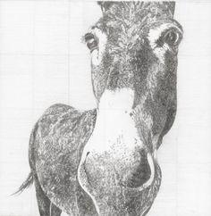 Instagram Site, Prints For Sale, Pencil Drawings, Printmaking, Woodland, Cow, Moose Art, Wildlife, Horses