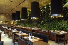 """Located in Mexico City, Restaurant Japonez offers hungry souls searching for Asian-inspired dishes a serene landscape seated between a stunning living wall, wood, and an incredible glass enclosure. Designed by Serrano Cherrem Architects, the double-height space allows for tons of natural lighting during the day and lets in the city at night, creating a juxtaposition that brings the city indoors into the organic nature of the restaurant's interior."""