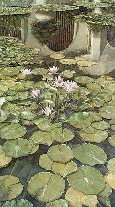 "Steve Hanks ""Lilies of Balboa"" Balboa Park, San Diego.  watercolor"