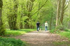 Why Walks in the Country Is Good For The Soul And Body - http://www.survivorninja.com/why-walks-in-the-country-is-good-for-the-soul-and-body/
