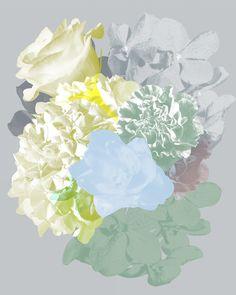 Contemporary photography and artwork Mauren Brodbeck, Loyalland, Untitled 02 Contemporary Photography, Contemporary Art, Filmmaking, Abstract, Artist, Artwork, Flowers, Color, Cinema