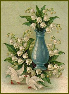 Botanical drawings on Pinterest | 72 Pins on botanical drawings, bota…