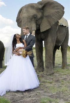 Photos: Couple's Dream Wedding in Africa Interracial Couples, Interracial Wedding, Safari Wedding, Dog Wedding, Elephant Wedding, Wedding Couples, Wedding Ceremony, Black Woman White Man, Black Girls