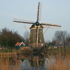 De 1100 Roe is de naam van een poldermolen in Amsterdam die voorheen aan de Haarlemmerweg stond. De naam van de molen is gebaseerd op de afstand in roede tot de Haarlemmerpoort, dat is bijna vier kilometer.De molen is gebouwd in 1674 na de aanleg van de Haarlemmertrekvaart en diende voor de bemaling van de Sloterbinnen- en Middelveldse gecombineerde polder.Het gevlucht bestaat uit fokwieken systeem Fauël. De vang is een Vlaamse vang met wipstok en de kap van de molen draait op een Engels…