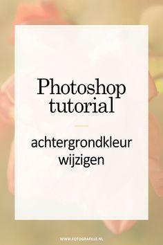 Tutorial - Fotos in animiertes GIF verarbeiten - Fotografille - Today Pin Photoshop Tutorial, Photoshop Design, Photoshop Actions, Adobe Photoshop, Photoshop Website, Advanced Photoshop, Photoshop For Photographers, Photoshop Photography, After Effects