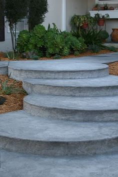 succulent stair - Google Search
