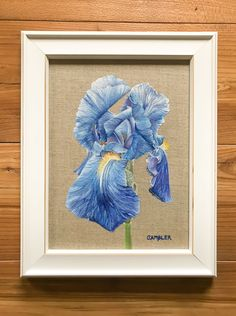 This blue bearded iris grows in my mum's garden and is a flower I've been meaning to paint for a long time. This little oil painting is on a natural linen board and is supplied framed and ready to hang. Beautiful Paintings Of Flowers, Painted Boards, Iris Flowers, Original Art For Sale, Small Paintings, Natural Linen, Painting & Drawing, Flower Art, Bloom