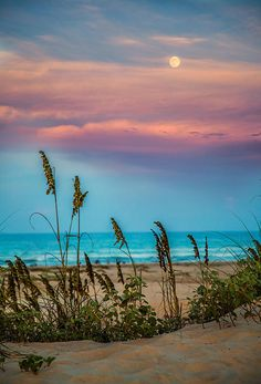 """The Moon And The Sunset"" - South Padre Island. Such a cotton-candy sky over the beach Beautiful Sunset, Beautiful Beaches, Beautiful World, All Nature, Amazing Nature, Amazing Art, Beach Scenes, Ocean Scenes, Belle Photo"