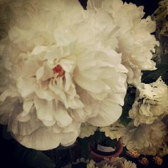 Silkflowers httprusswholesaleflowersbest silk wholesale silkflowers httprusswholesaleflowersbest silk wholesale flowers russ wholesale flowers offers silk flower arrangements silk flowers mightylinksfo