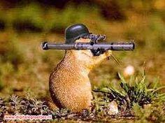 een muis met wapen