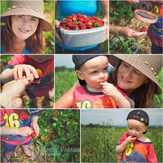 Strawberries and friends. Annick Paradis photographe.